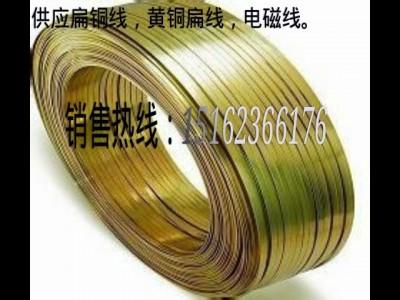 厂家供应H62/H65黄铜扁线 扁铜线