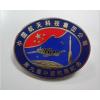 烟台专业金属徽章订做庆典纪念胸章制作胸牌生产工厂